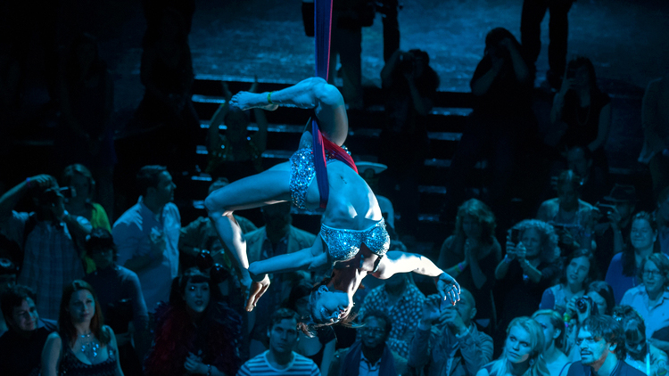 Massachusetts Corporate Event Party Aerial Hoop Performer Connecticut Aerial Lyra Artist Rhode Island Aerialist New Hampshire Aerial Hammock Dancer Circus Aerial Sling