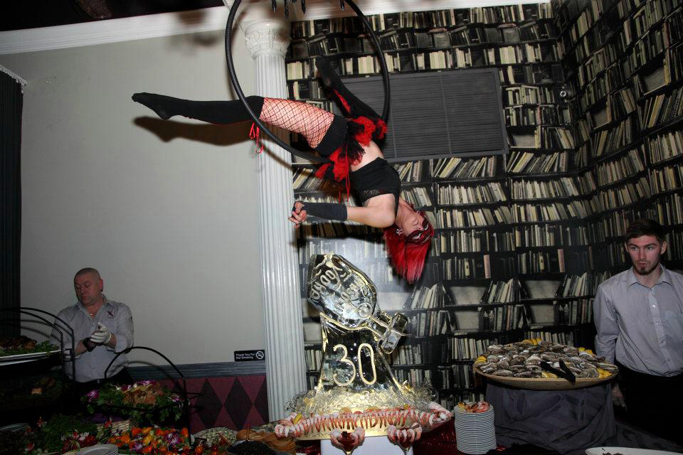 Massachusetts Hotel Event Party Aerial Hoop Performer Connecticut Aerial Lyra Artist Rhode Island Aerialist New Hampshire Aerial Hammock Dancer Circus Aerial Sling