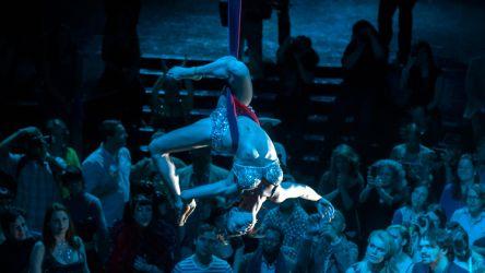 Aerial Hammock Sling Performer Circus Aerialist Carnivale Boston