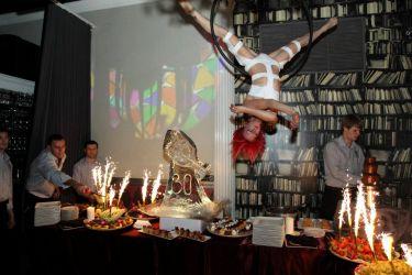 Aerial Lyra Hoop Performer Circus Aerialist Upscale Event Leeloo Dallas Halloween Rhode Island